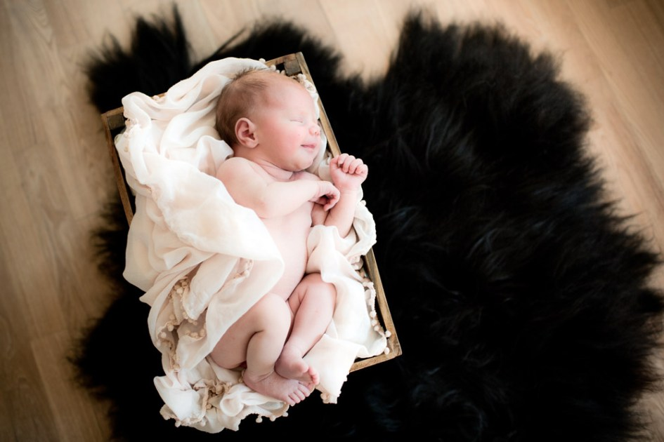 Little angels newborn foto